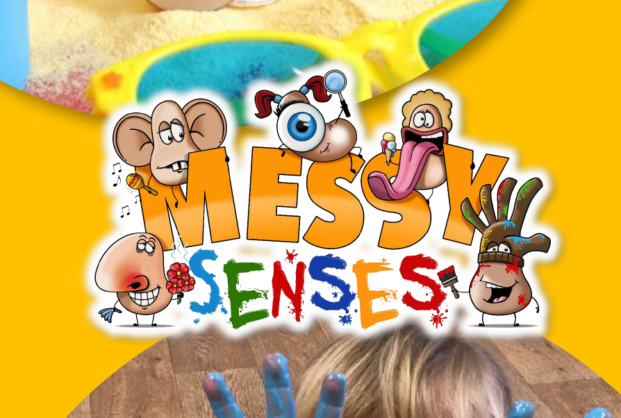 Messy Senses Ltd